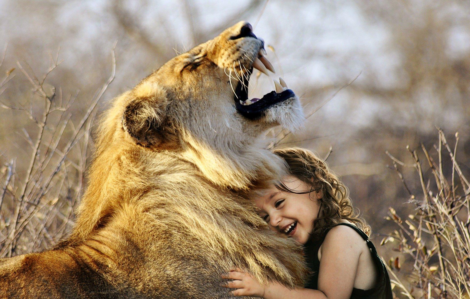 Löwe - König der Sternzeichen